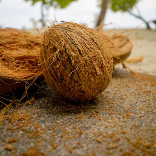 Materace z kokosem - jaki produkt wybrać?